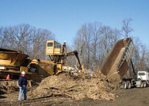 Advantages & Disadvantages Of Biomass Energy