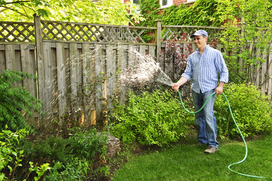 Tips For Watering Your Lawn