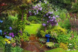 A Flower For All Seasons – Let Your Garden Bloom All Year Round