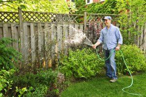 Best Kept Gardening Secrets and Ideas