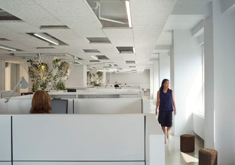 Achieving Productivity Through Important Office Design