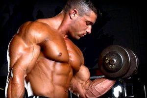 What Is Meant By Muscle Building?