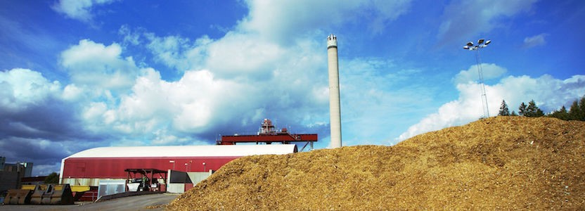 Biomass A Renewable Energy Resource Which Is Proving To Be A Boon For The World