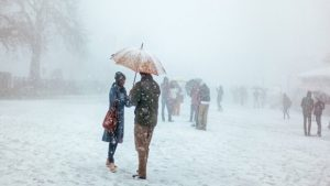 Shimla - The Perfect Holiday Destination For Any Occasion