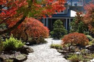 How To Select Fence Portland Landscaper For Landscaping