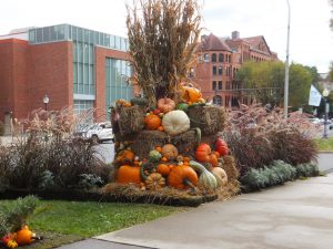 Make Your Home Events More Colorful With Seasonal Displays
