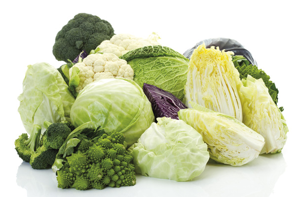 Cruciferous Vegetables That Can Help Prevent Cancer