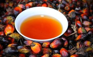 What Are The Health Benefits Of Red Palm Oil from Palm Fruit