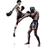 Your New Hobby At Muay Thai Fitness Gym
