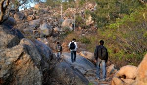 Bangalore Treks For Exciting Adventures and Thrills