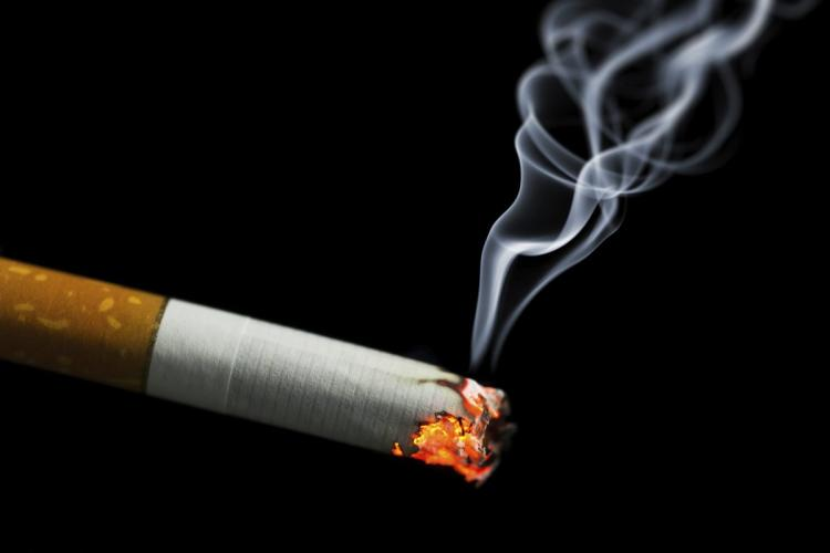 The Environmental Impact Of Smoking