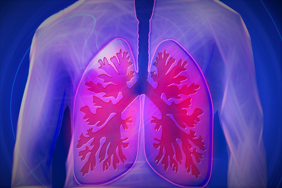 7 Tips On How To Improve Lung Cancer Survival